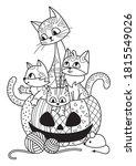 Halloween Pumpkin And Cats...