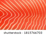 salmon or trout fish meat... | Shutterstock .eps vector #1815766703