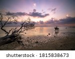 Scenic View Of A Man Riding A...