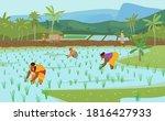 vector illustration of indian... | Shutterstock .eps vector #1816427933