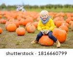 Little Boy On A Pumpkin Farm A...
