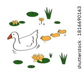 Mother goose with little yellow goslings swimming in the lake between water lilies. Cute vector illustration of waterfowl in cartoon style on isolated white background