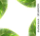 green coconut leaves frame... | Shutterstock . vector #181684394