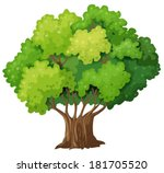 illustration of a big old tree...