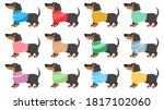 dachshund clothes. dogs wear... | Shutterstock .eps vector #1817102060