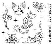 doodle mystic set with magic... | Shutterstock .eps vector #1817102993