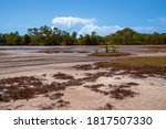 A Tidal Salt Pan Environment...