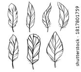 outline symbol collection.... | Shutterstock .eps vector #1817801759