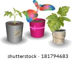 three different plants | Shutterstock .eps vector #181794683