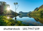 Lone Tree And Buttermere Lake...