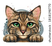 Kitten. Wall Sticker. Color ...