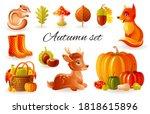 Autumn Vector Forest Animals....