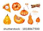 Pumpkins. Squash. Cinnamon...