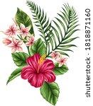 wonderful rad flower and green... | Shutterstock . vector #1818871160
