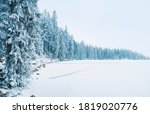 Frozen Lake And Winter Forest...