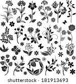 graphic floral collection   Shutterstock .eps vector #181913693
