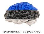 Human Brain With Estonian Flag. ...