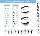 eyelash extension  woman's eye... | Shutterstock .eps vector #1819598273