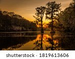 Sunrise With Cypress Trees In...