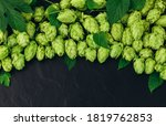 Bunch Of Hops Cones With Leave...
