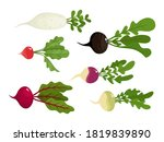 bright vector collection of... | Shutterstock .eps vector #1819839890