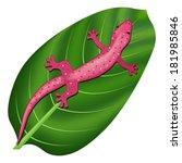 lizard   Shutterstock .eps vector #181985846