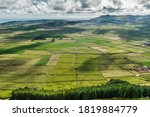 Verdant Landscape In Caldera Of ...