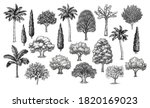big collection of trees. ink... | Shutterstock .eps vector #1820169023
