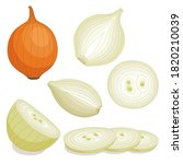 vector onion isolated on white. ... | Shutterstock .eps vector #1820210039
