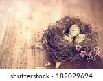 bird's nest with eggs and tiny... | Shutterstock . vector #182029694