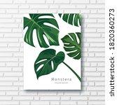 monstera green leave... | Shutterstock .eps vector #1820360273