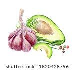 garlic avocado rosemary dill... | Shutterstock . vector #1820428796