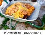 Bags Of Potatoes In A Garden...