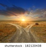 Fork Roads In Steppe On Sunset...