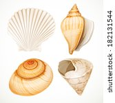 Set Realistic Seashells...