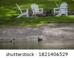 Two Mallard Ducks On A Lake...