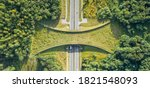 Aerial Top Down View Of Ecoduct ...