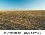 Stubble Field To Horizon And...