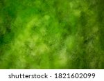 Seaweed In The Swamp....