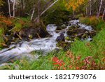 Early fall colours glow along the banks of a creek near the Ingraham Trail in Canada