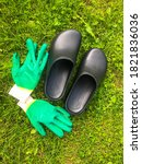 Small photo of rubber galoshes and green construction gloves lie on the green grass. gardening tools. gardening, agriculture. growing crops for winter harvesting and pet food. autumn harvest.