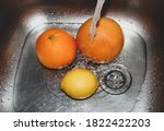 Citrus Fruits Lie In The Sink...