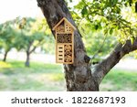 Decorative insect house with...