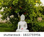 Buddha Statue In Our Garden...