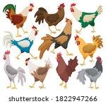 Cock Of Animal Isolated Cartoo...