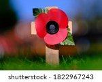 Poppy Appeal Symbol....