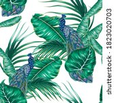 tropical palm leaves  peacock... | Shutterstock .eps vector #1823020703