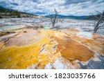 Hydrothermal Areas Of Mammoth...