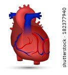 heart of human | Shutterstock . vector #182377940