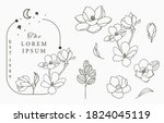 beauty occult logo collection...   Shutterstock .eps vector #1824045119